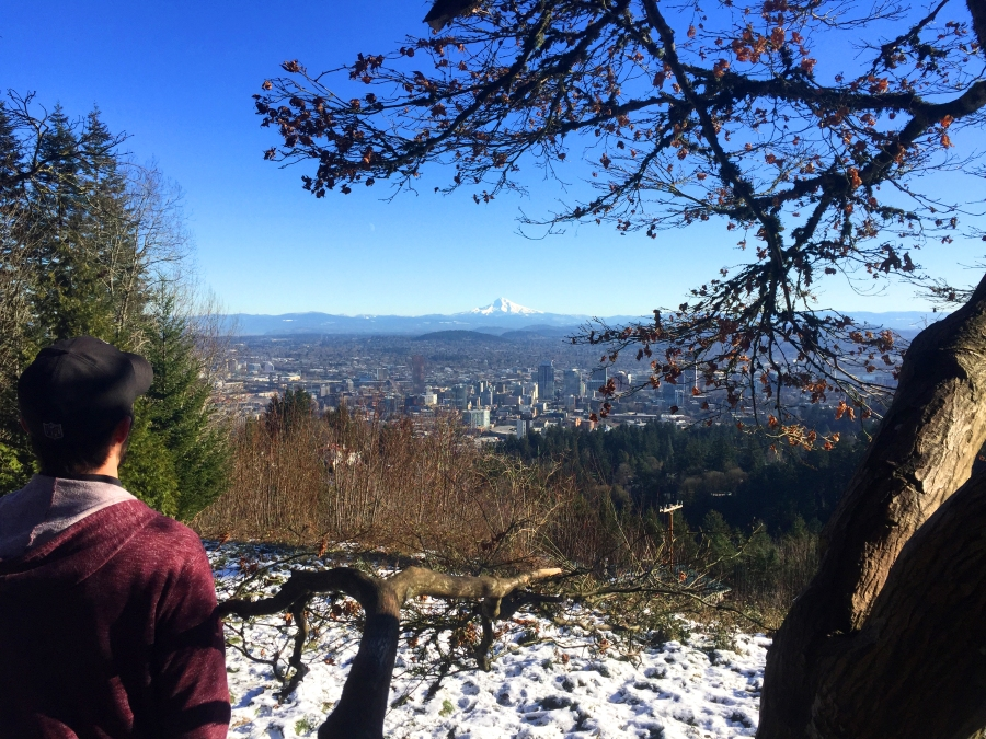 pittock_view.jpg